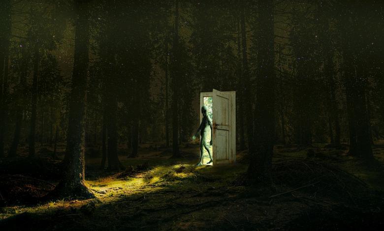 Extraterrestres en El Cartel Paranormal