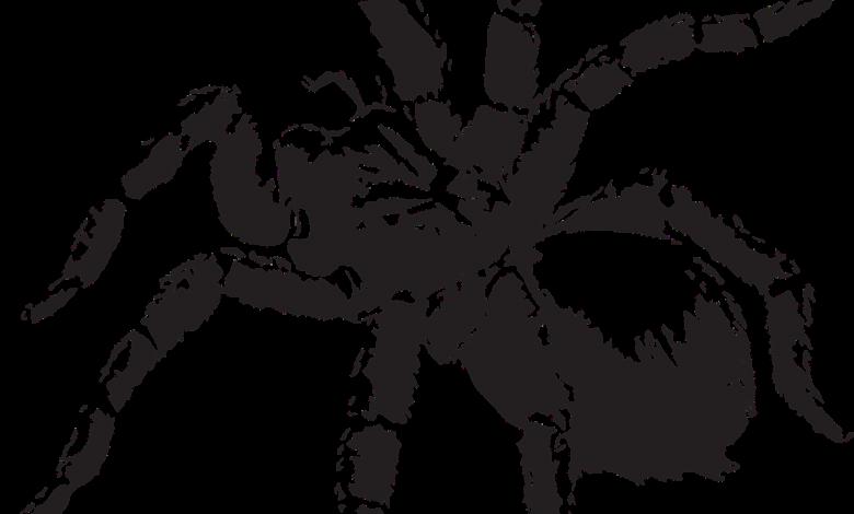 Historias y llamada extraña en El Cartel Paranormal - Julio 12