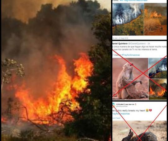 Fotos falsas sobre incendio en la Amazonía