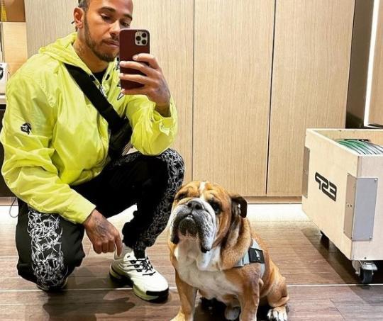 Lewis Hamilton y su perrito