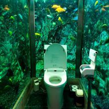 Café de Japón crea un baño rodeado de un acuario