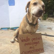 Deko vendía postres para pagar su quimioterapia