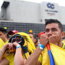 Hinchas de la Selección Colombia animan a la 'Tricolor'