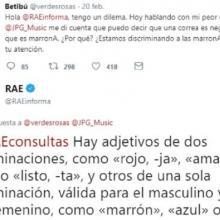 Rae.jpg