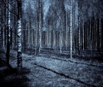 Historias e Investigadores en El Cartel Paranormal