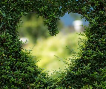"""Agosto con """"A"""" de amor en El Cartel"""