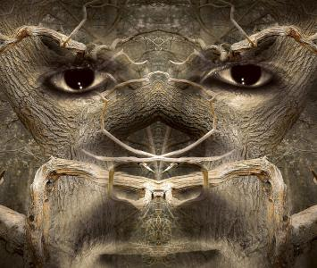 Casos Paranormales y Animales asesinos en El Cartel Paranormal
