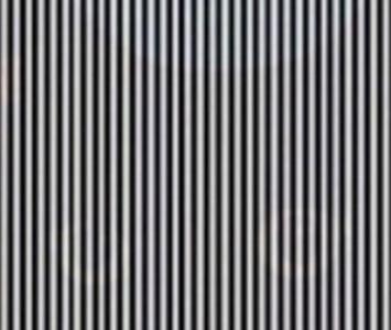 IlusionOptica.jpg
